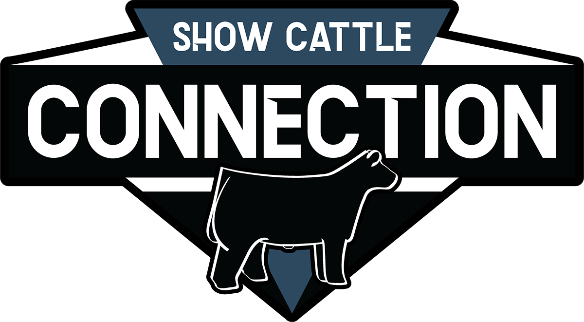 Show Cattle Connection